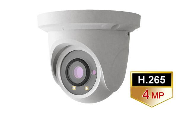31f08398c4b IP Dome Camera-3.6mm. 4M Pixel