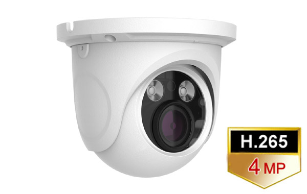 d439a509f21 IP Dome Camera-3.3-12mm motorized. 4M Pixel